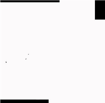 Pferde-Natur